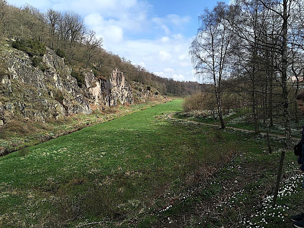 billede med Ekkodalen på Bornholm